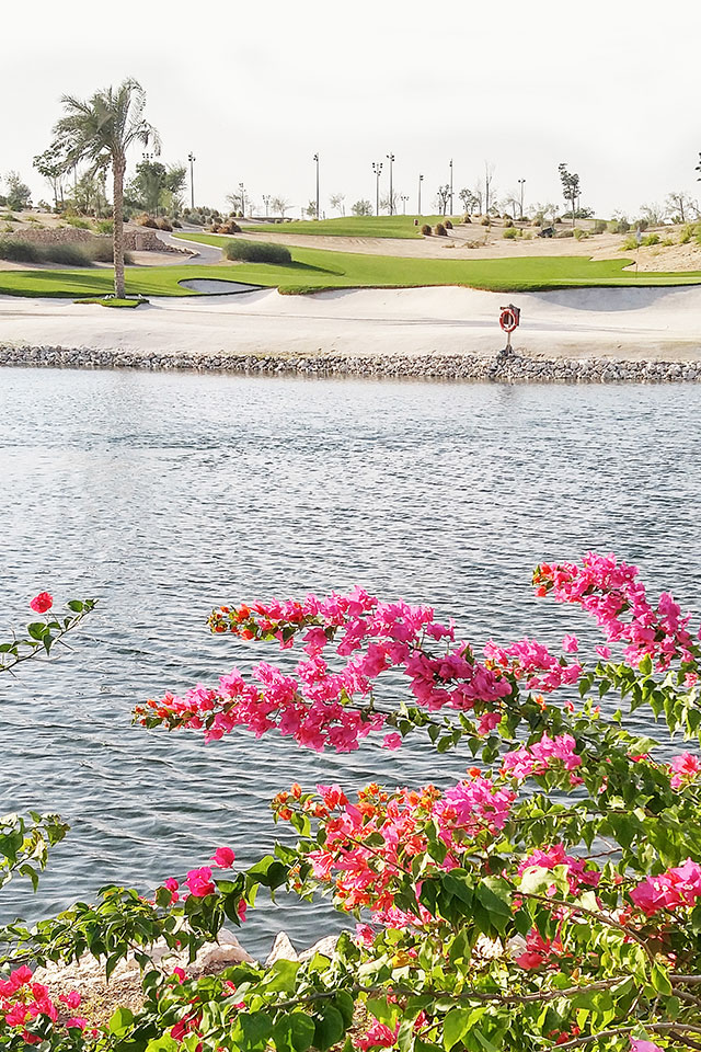 golf_course_featured
